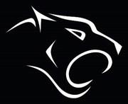 Pantheroar - wyprzedaże i kody rabatowe