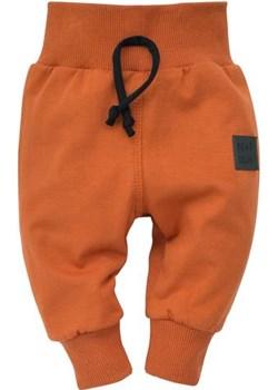 leginsy Bears Club 86 Pinokio Lena od niemowlaka do szkolniaka - kod rabatowy