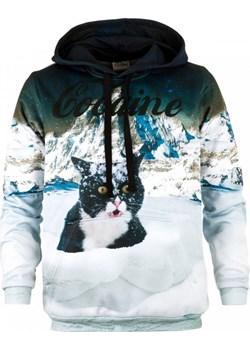 Bluza z kapturem Cocaine Cat Bittersweet Paris wyprzedaż Bittersweet Paris - kod rabatowy