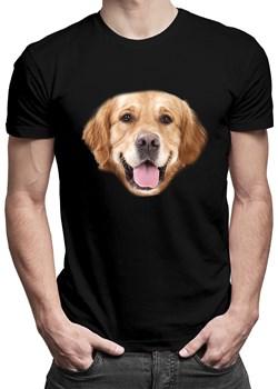 Golden retriever - męska koszulka z nadrukiem okazja Koszulkowy - kod rabatowy