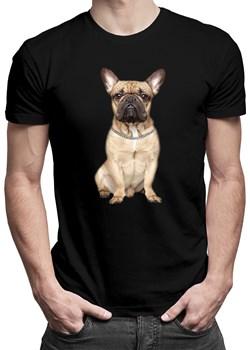 Buldog francuski (wersja 2) - męska koszulka z nadrukiem okazja Koszulkowy - kod rabatowy