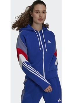 W SCB FZ HD Adidas - kod rabatowy