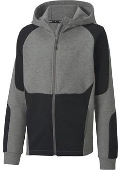 Bluza z kapturem chłopięca Puma Core EvoStripe szara 58322803 Puma Sportroom.pl - kod rabatowy