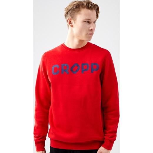 6854c22c56 Bluza męska Cropp w Domodi