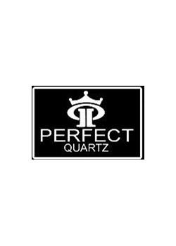 ZEGAREK MĘSKI PERFECT C141 - RAVE (zp104h) - Czarny || Srebrny szary Perfect TAYMA - kod rabatowy