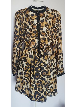 Sukienka panterka z guzikami Miracco  Maurit - kod rabatowy