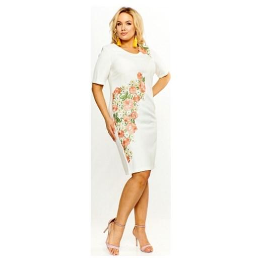 3b078a636a Sukienka Roxana midi w kwiaty z krótkim rękawem z okrągłym dekoltem ...