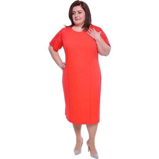 e024f3aff00698 Sukienka z krótkim rękawem prosta czerwona elegancka z okrągłym dekoltem