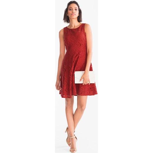 b3ccfd475a Sukienka Yessica z koronką bez rękawów bawełniana trapezowa w Domodi
