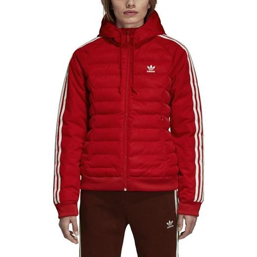 kurtka sportowa zimowa damska adidas