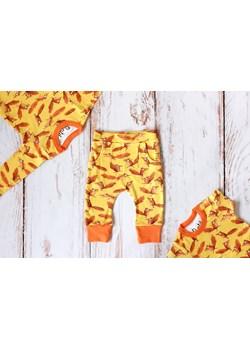 Zestaw Wiewiórki body krótki + długi rękaw + spodnie Pontiki pontikibaby.com - kod rabatowy
