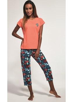 Bawełnian piżama damska Cornette 3 częściowa 665/173 Cactus Morelowa Cornette bodyciao - kod rabatowy