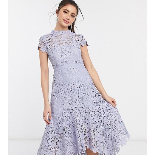 Sukienka Forever New Petite niebieska na urodziny w Domodi