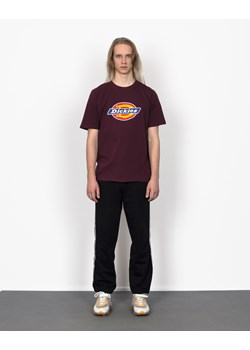 T-shirt męski Dickies - Roots On The Roof
